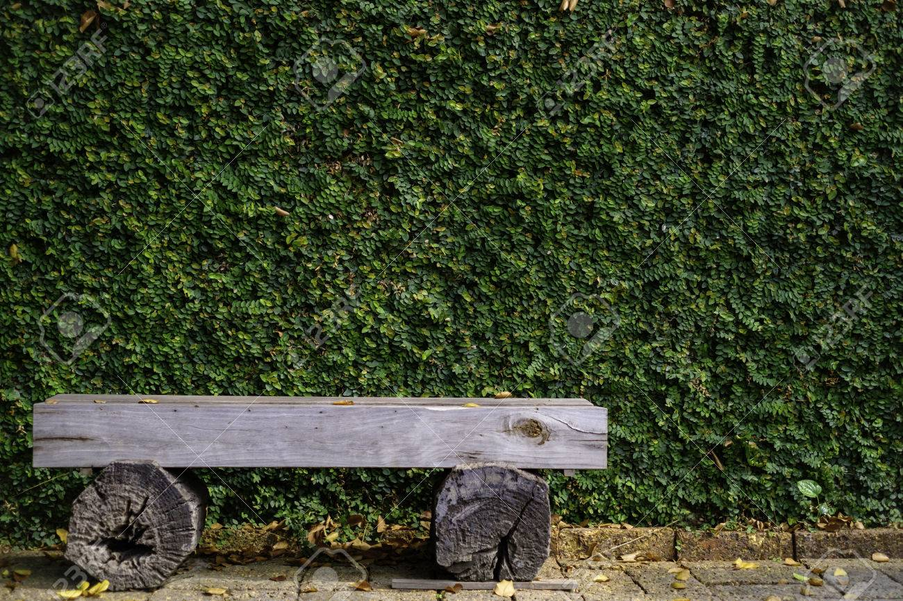 Garden Chair Background