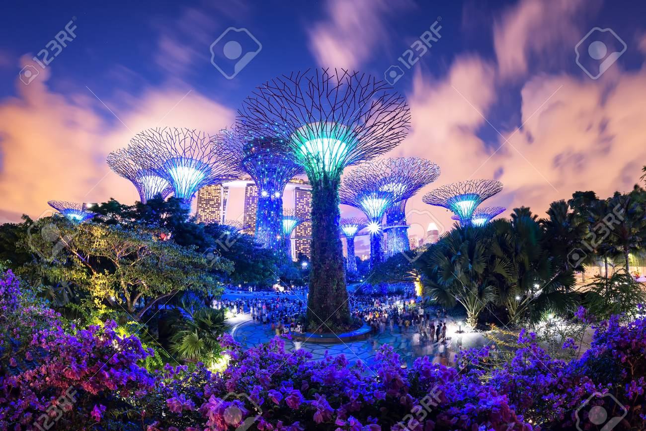 travel,Supertree garden at night, Garden by the Bay,  Singapore,SINGAPORE,JULY..