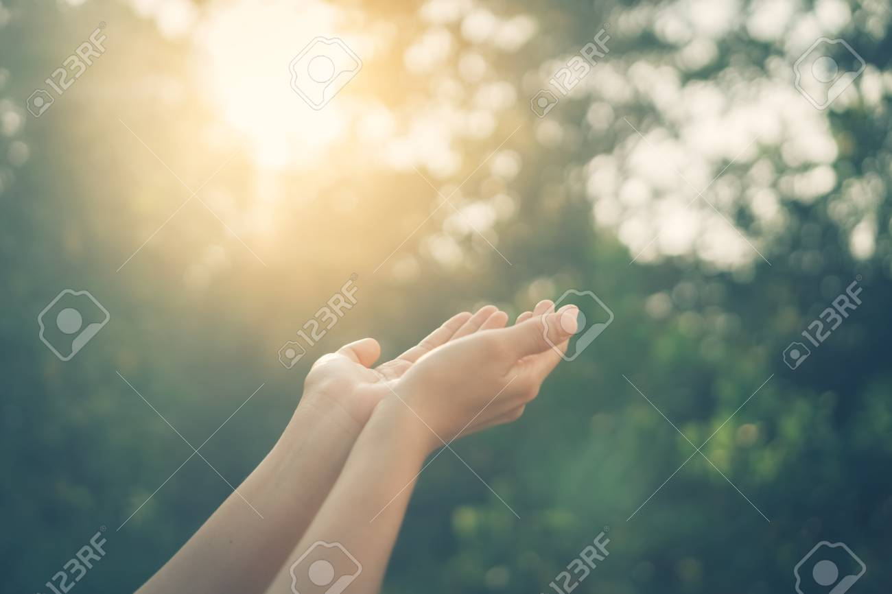 Woman open hand up to sunset sky and green blur leaf bokeh sun light abstract background. Vintage tone filter effect color style. - 117634533