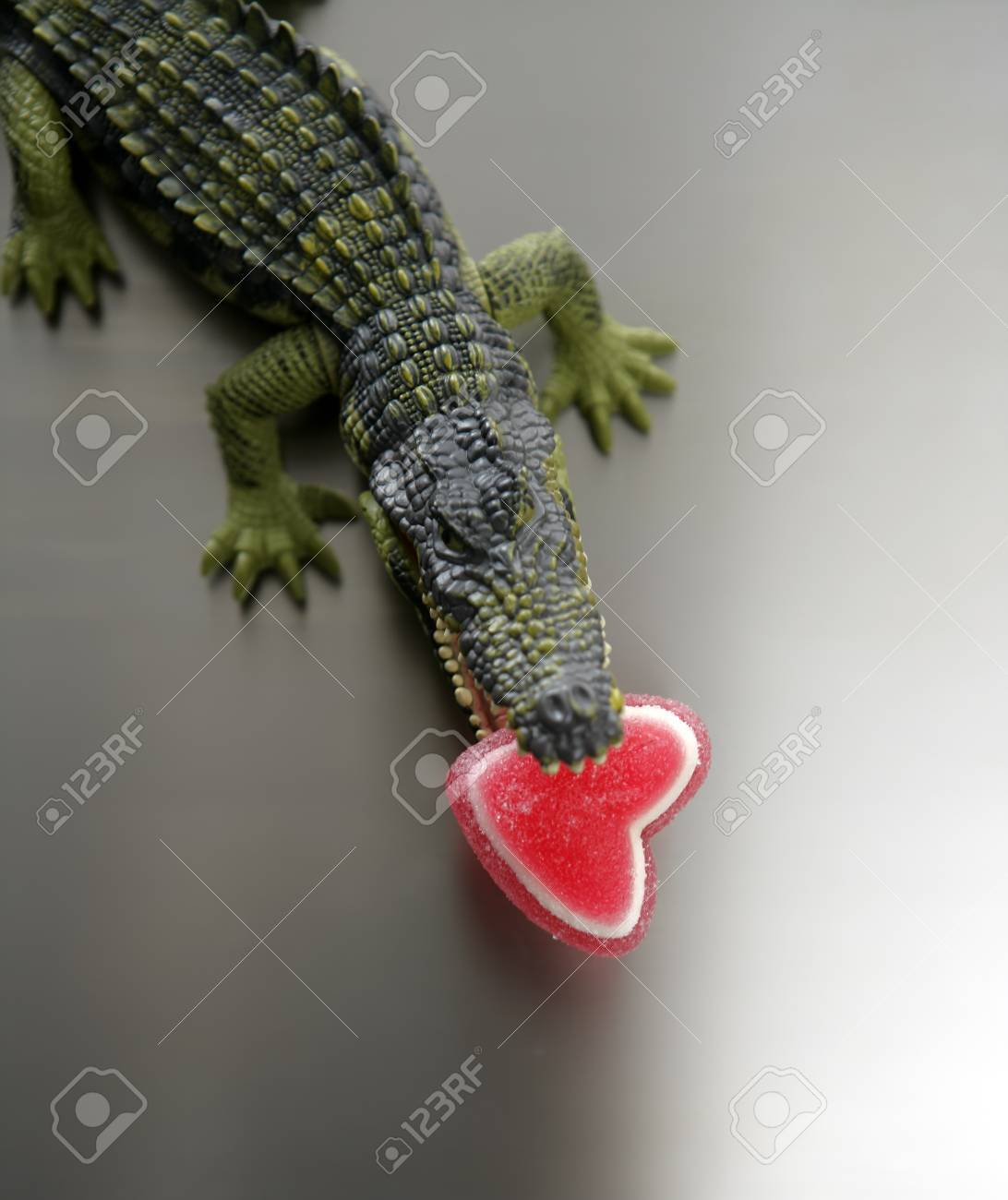 Toy plastic cocodrile, aligator with candy Valentine red heart in its sharped theet jaws metaphor Stock Photo - 4061172