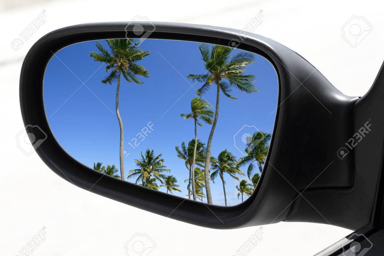rearview car driving mirror view tropical palm trees blue sky Stock Photo - 7515948
