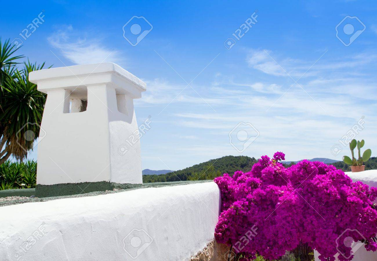 foto de archivo ibiza casas blancas y flores en sant miquel de balansat