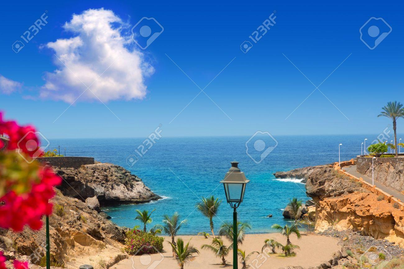 Beach Playa Paraiso costa Adeje in Tenerife at Canary Islands - 15275118