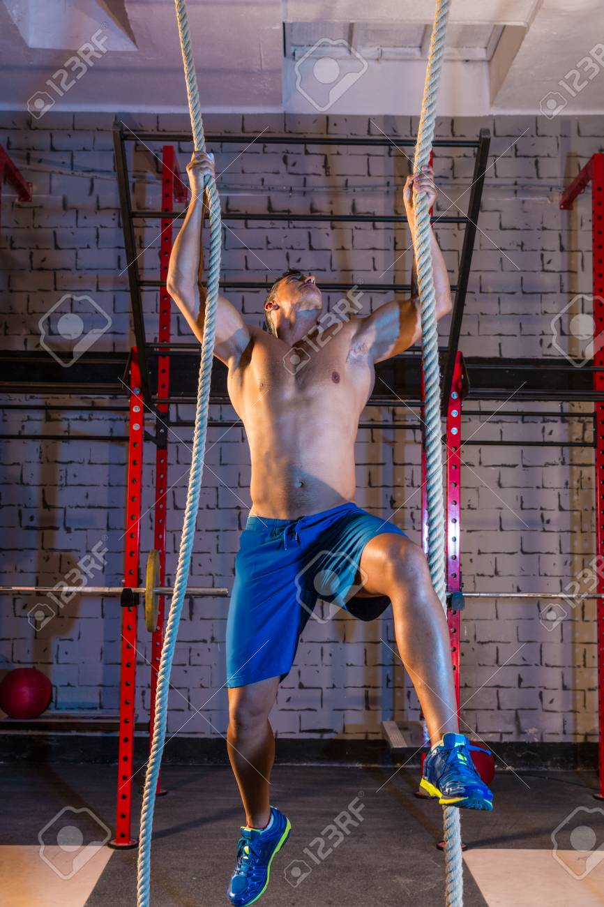 climb with two 2 ropes exercise man workout at gym stock photo