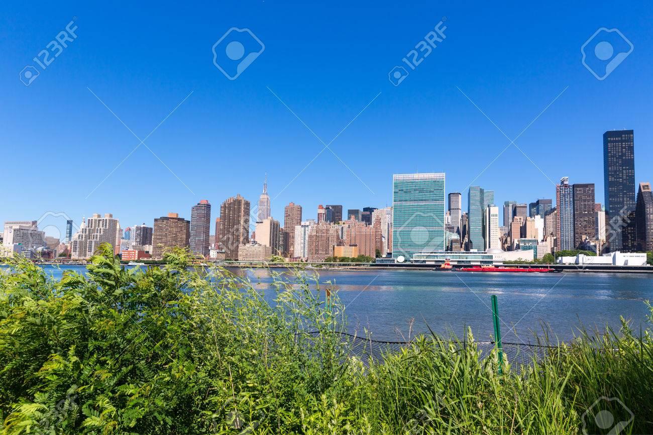 Manhattan New York sunny skyline from green park plants East