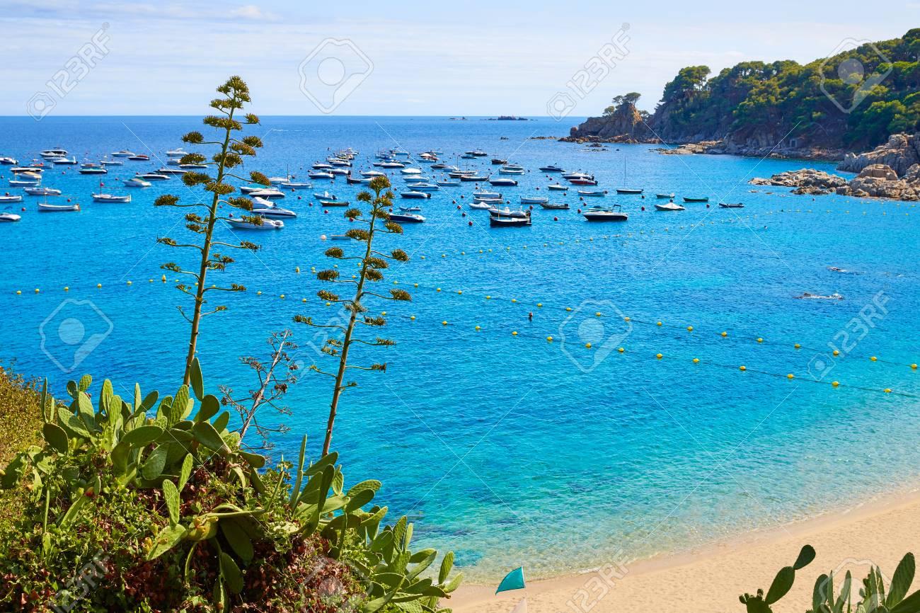 Calella De Parafrugell Beach In Costa Brava Of Girona At Catalonia