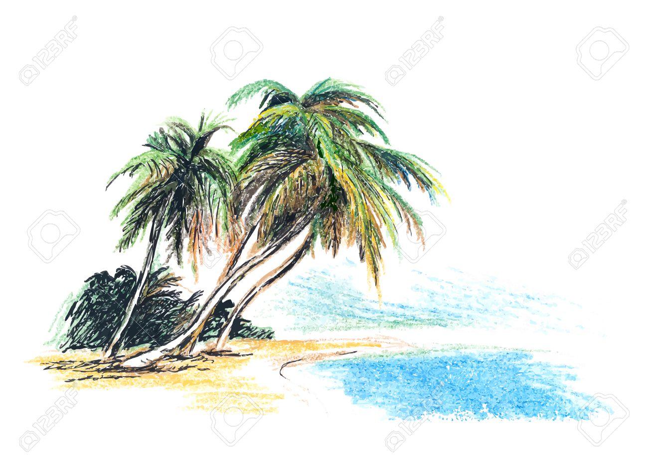 Dibujo De Playa Con Palmeras Ilustración Vectorial