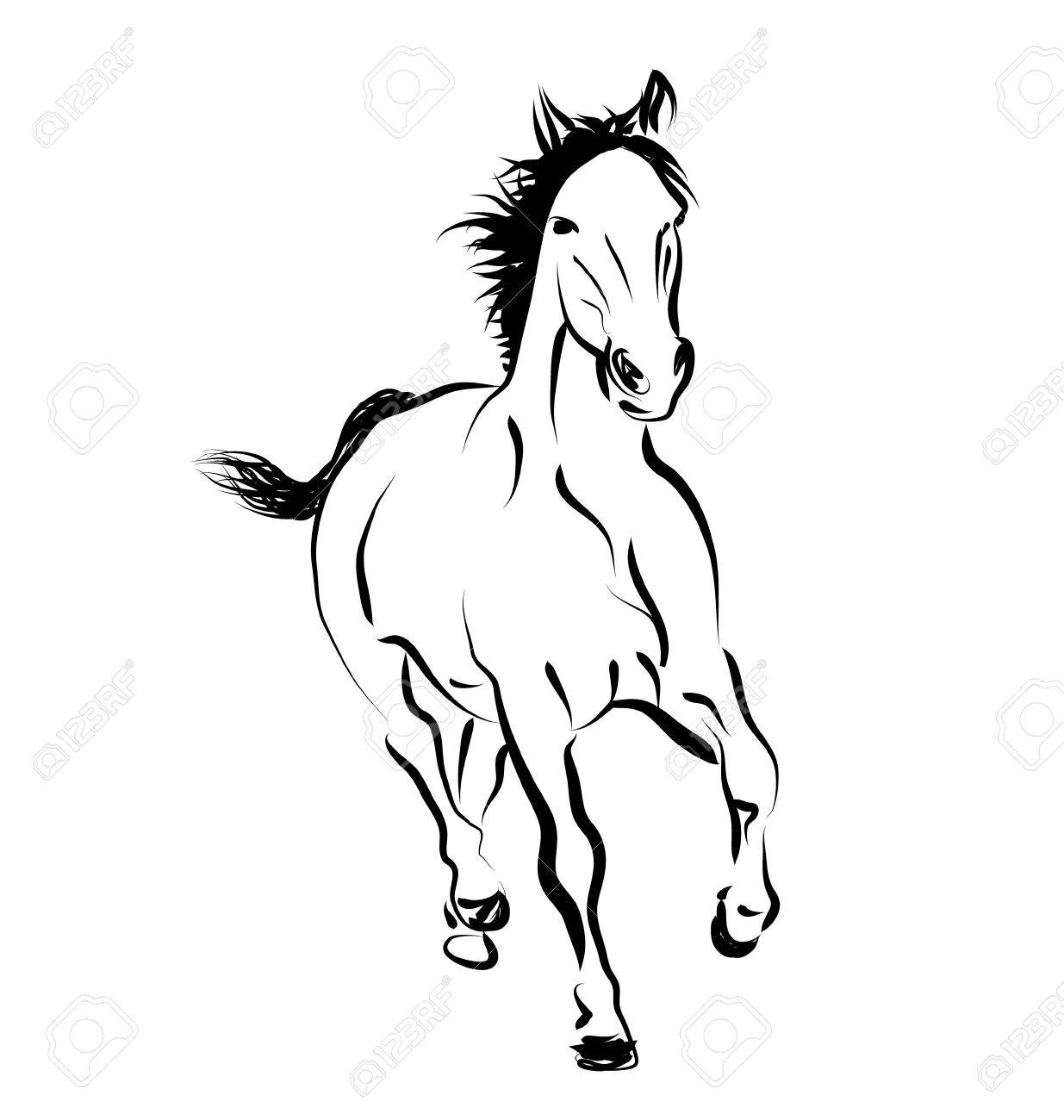 Vector Line Sketch Of A Running Horse Royalty Free Cliparts Vectors And Stock Illustration Image 56734321