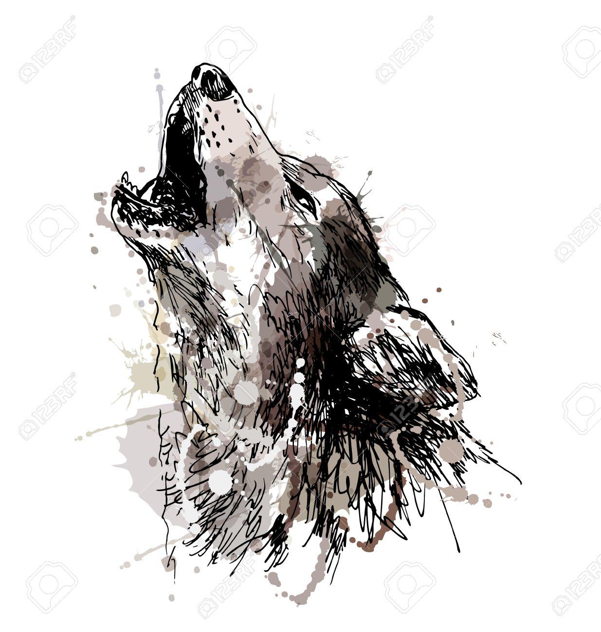 Dibujo A Mano De Color De Un Lobo Aullando Ilustración Vectorial