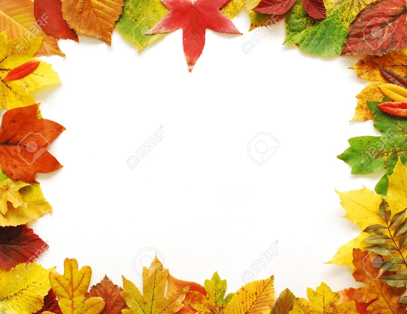 Autumn Leaves Frame Stock Photo - 5826259