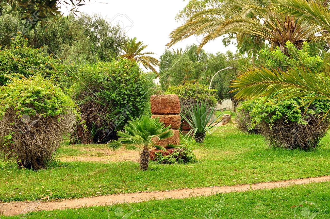 Agadir City Morocco Olhao Park Plants Garden Stock Photo Picture And Royalty Free Image Image 42130732
