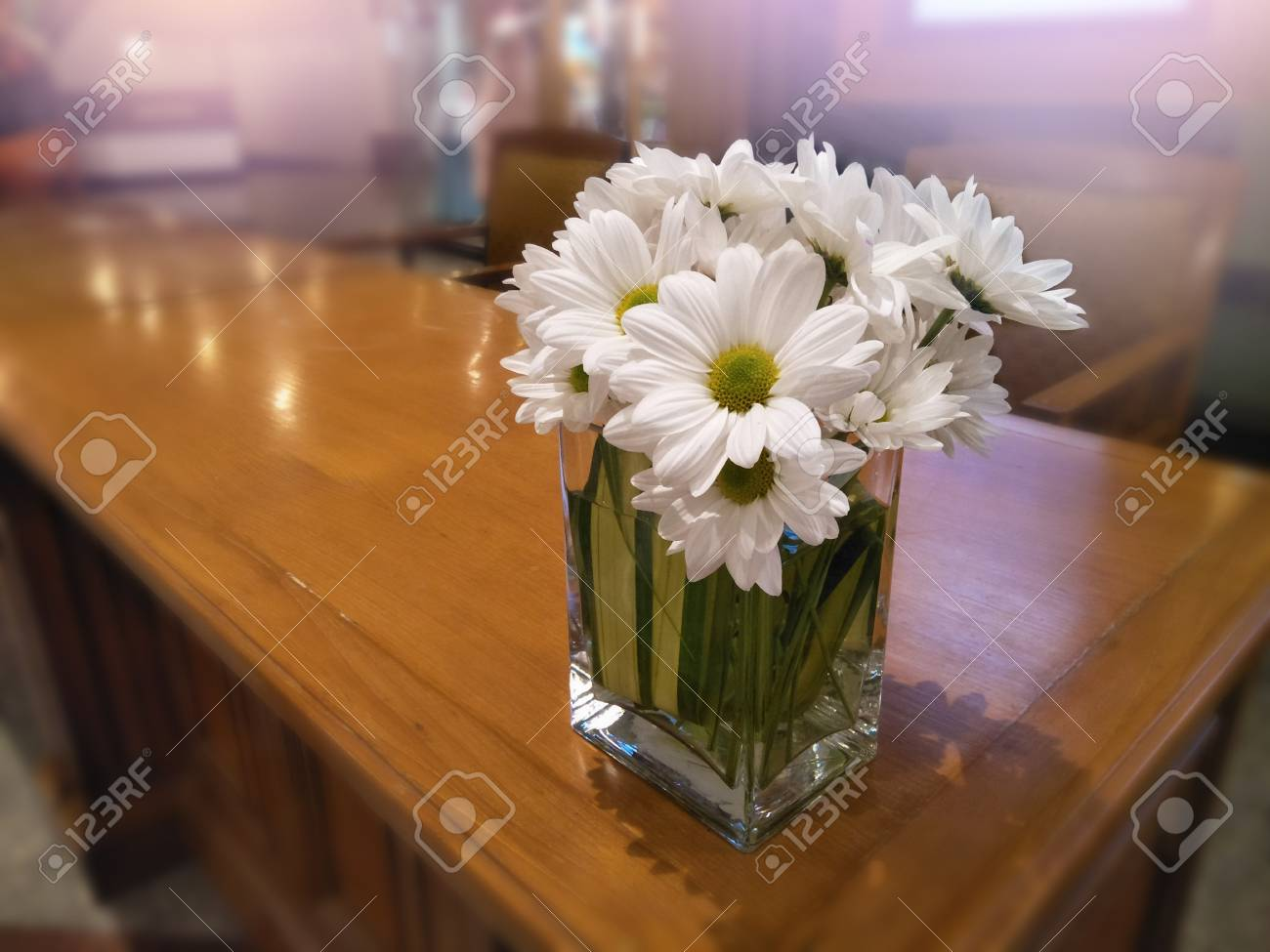 Close up daisy bouquet in vase on table for decorative room and close up daisy bouquet in vase on table for decorative room and interiorwhite flower mightylinksfo