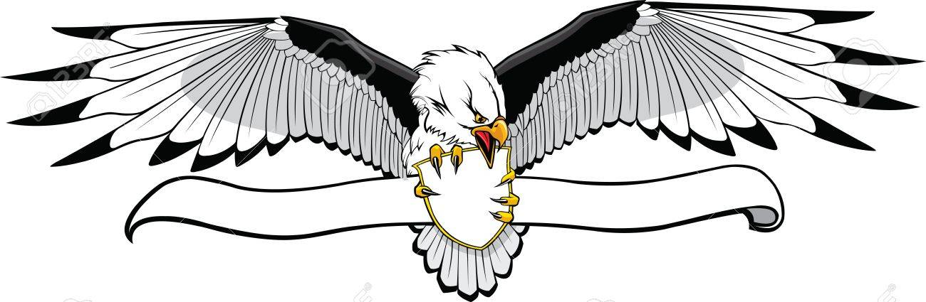 Illustrated Eagle with banner  Put what you want on banner   art and Hi res raster files available Stock Vector - 16513678