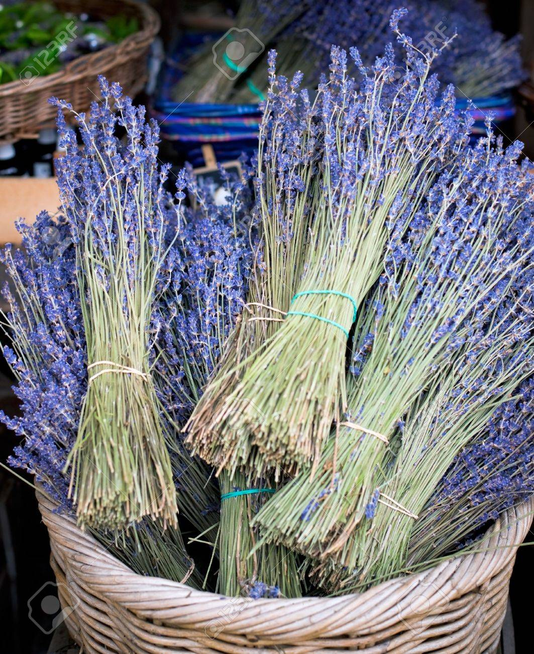 Dry Lavender Bunches in basket for Sale at street market Stock Photo - 7125398