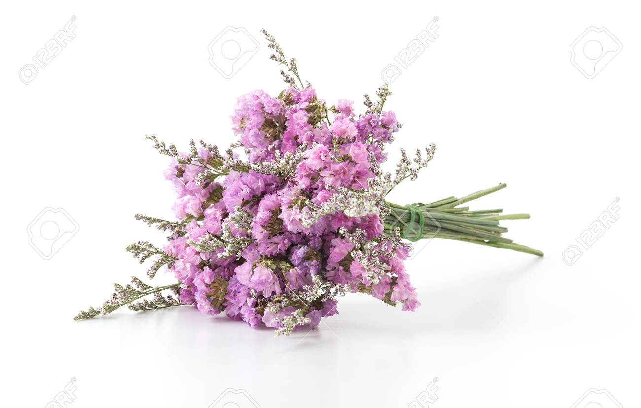 Statice flower bouquet on white background stock photo picture and statice flower bouquet on white background stock photo 44355598 mightylinksfo Images
