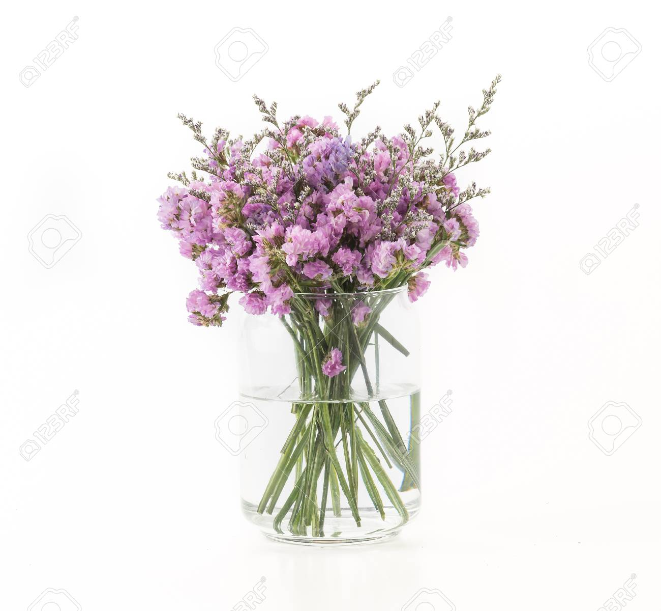 Statice flower bouquet on white background stock photo picture and statice flower bouquet on white background stock photo 44355698 mightylinksfo Images