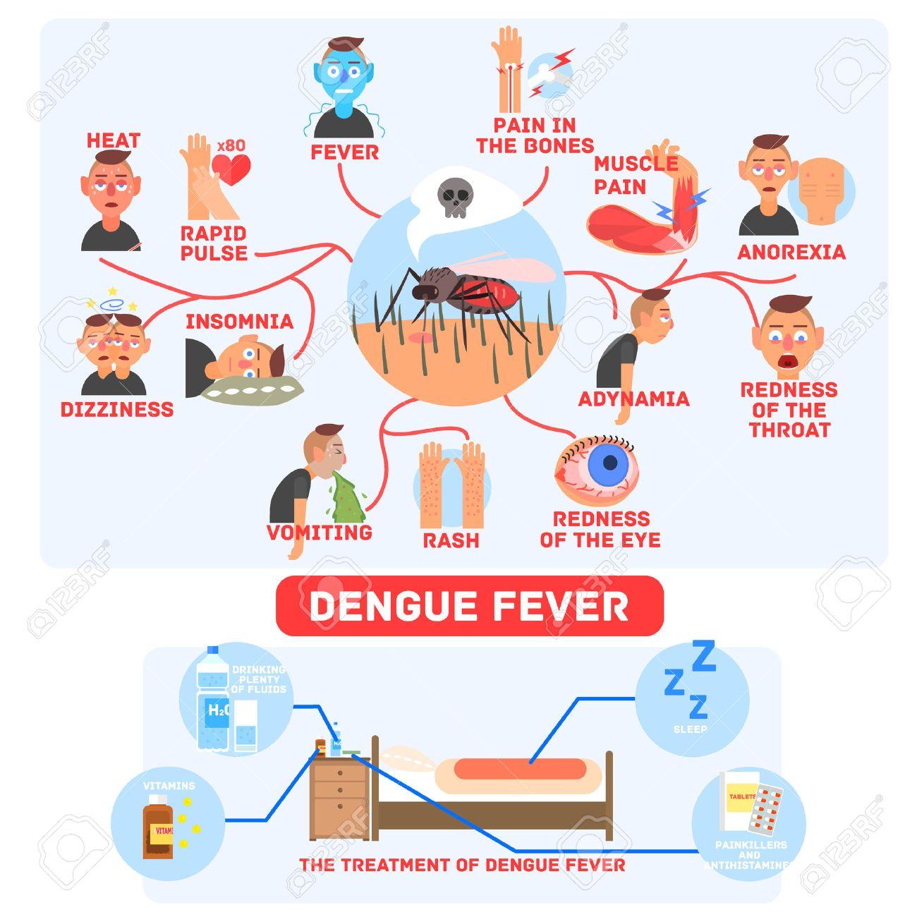 Dengue Fever Infects La Fte De >> Dengue Fever Infographics Fun Flat Vector Illustration In Simple