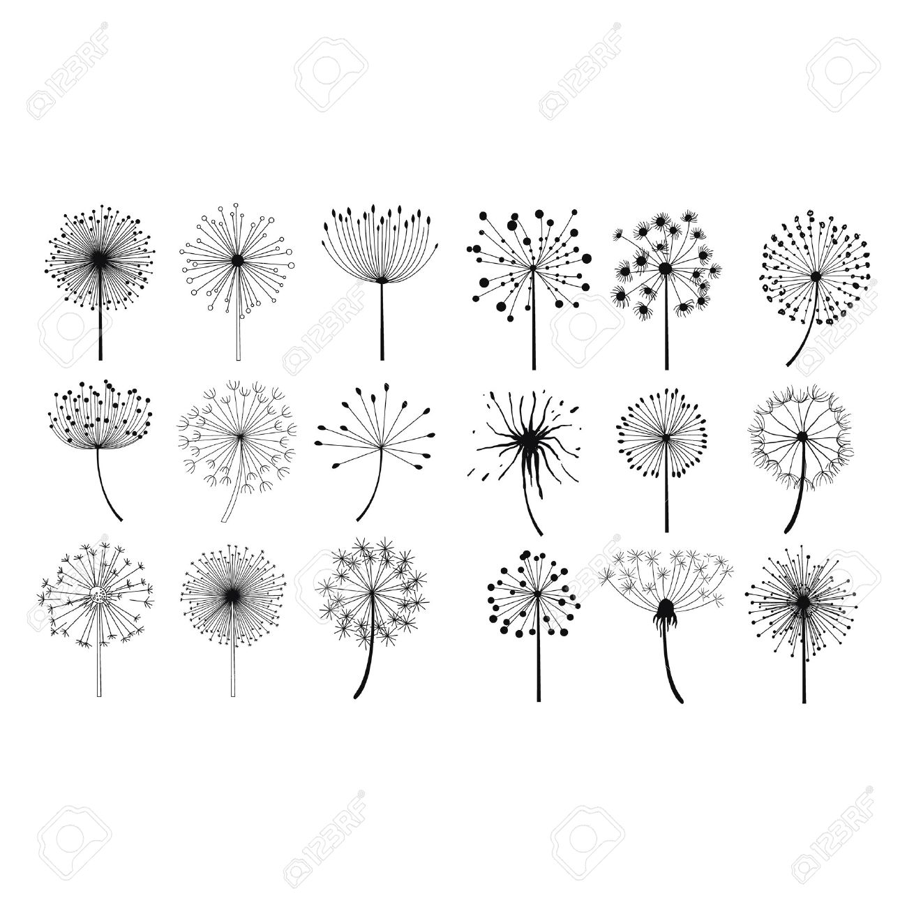Dandelion Fluffy Seeds Flowers Hand Drawn Doodle Style Black And White Drawing Vector Icons Set - 55499242