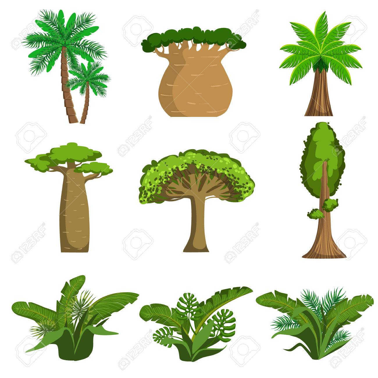 jungle trees and plants set of simple style flat vector rh 123rf com vector jungle free vector jungle background