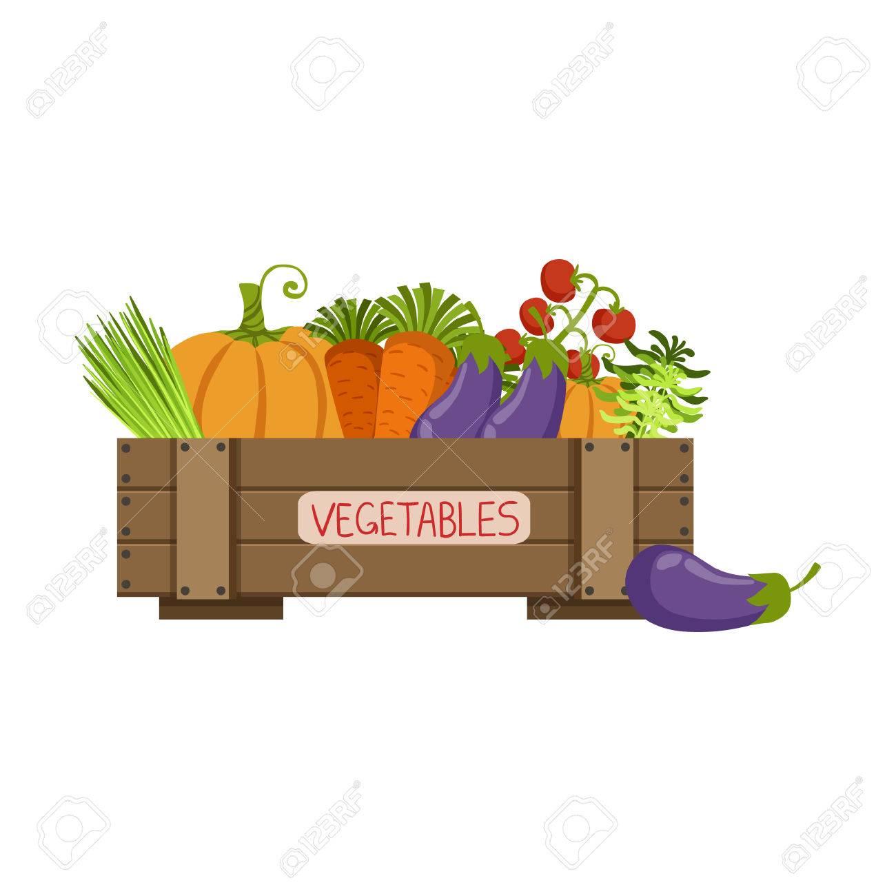 Volle Kiste Frisches Gemüse Wohnung Einfache Bunte Design Vector ...