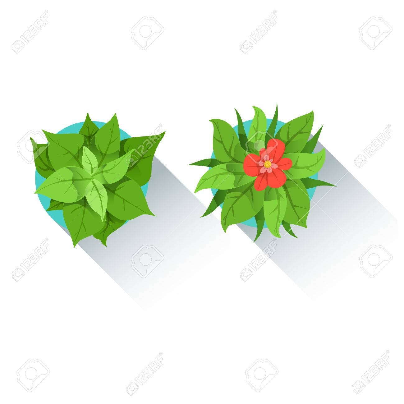 decorative plants for office. Two Decorative Table Plants Office Worker Desk Element, Part Of Workplace Tools And Stationary Collection For O