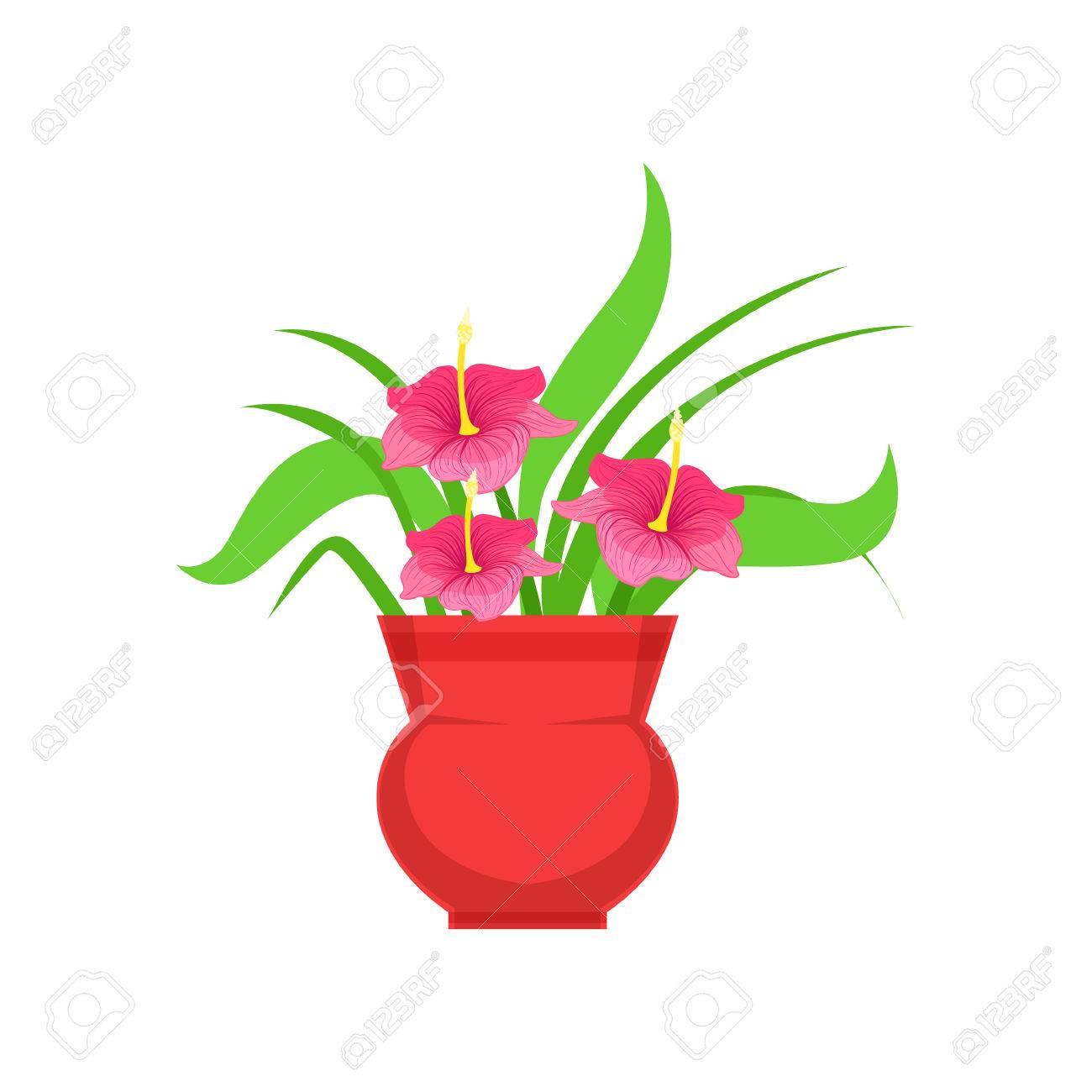 Home Hibiscus Flower In The Flowerpot Flower Shop Decorative