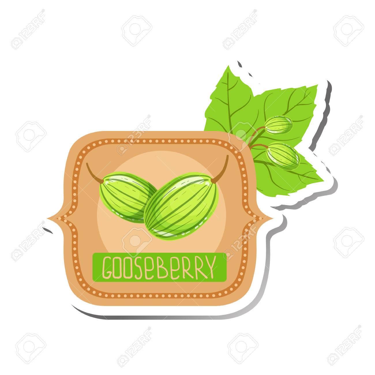 Gooseberry Bright Color Jam Label Sticker Template In Square