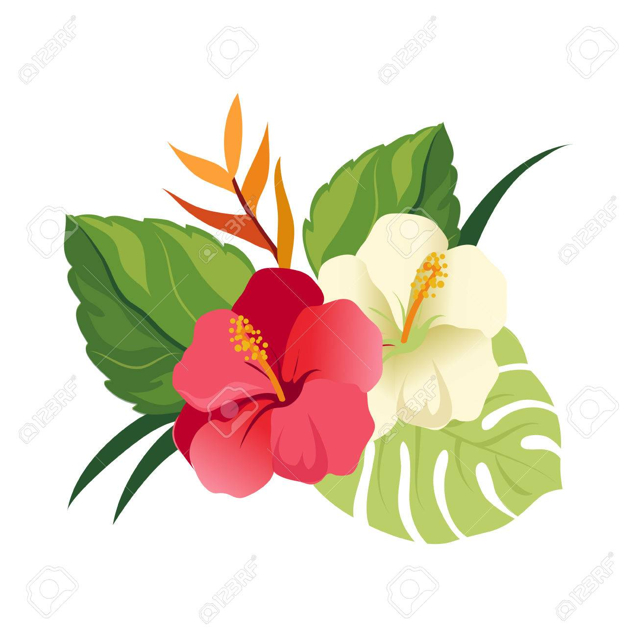 Beautiful Hibiscus Flowers And Palm Leaves. Elegant Floral Vector ...