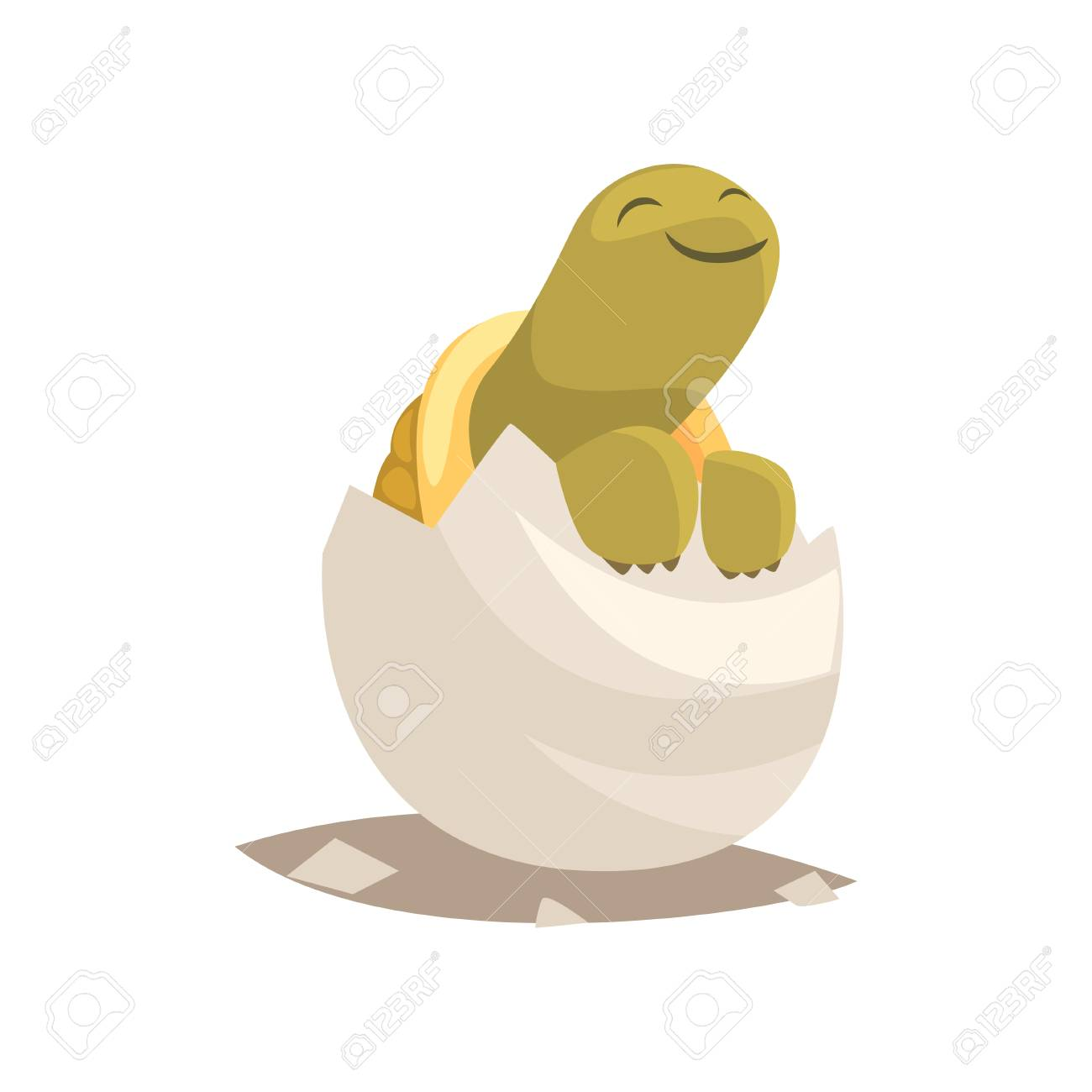 Funny green newborn turtle in broken egg shell baby animal hatching from egg little