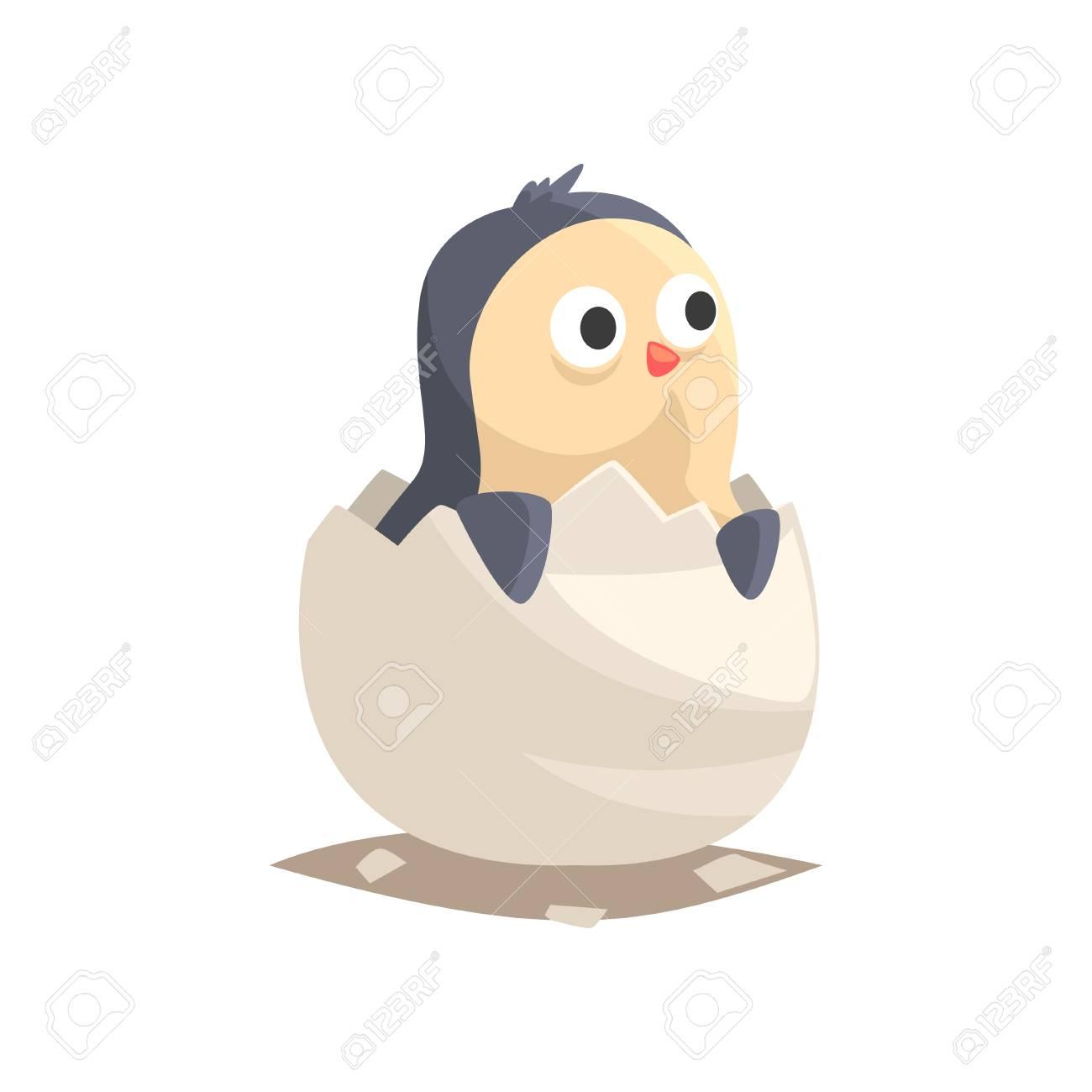 Adorable newborn penguin in broken egg shell baby aquatic bird hatching from egg little