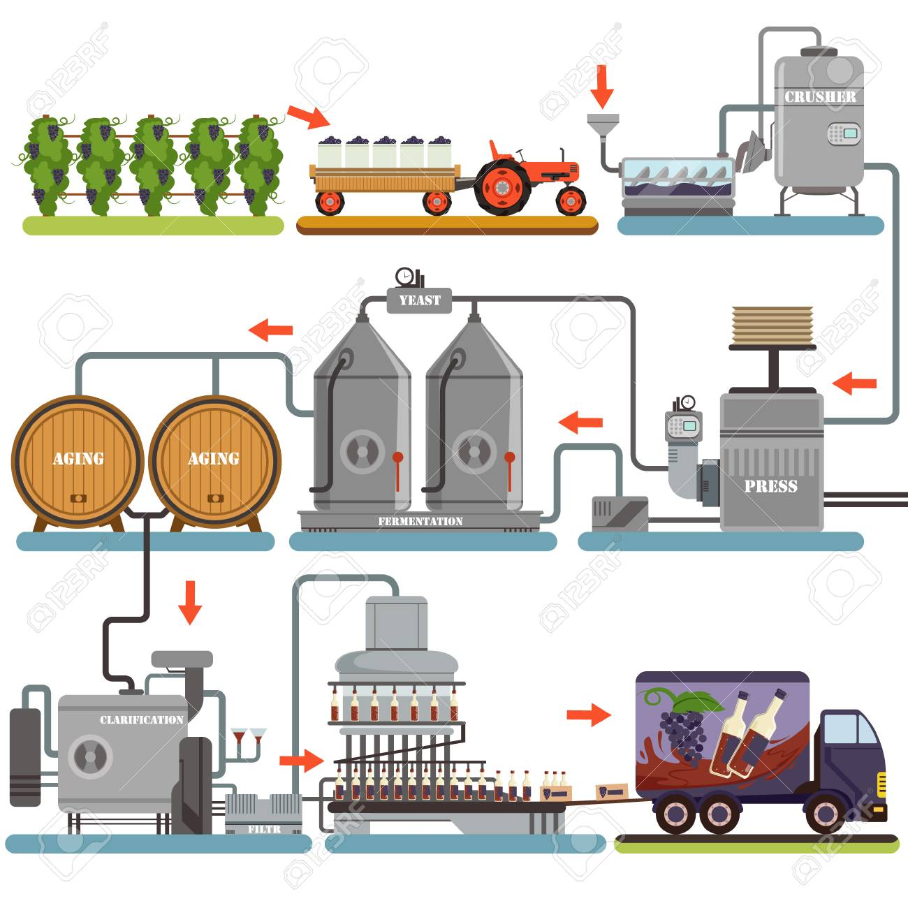 Wine production process, production beverage from grape flat vector Illustrations isolated on a white background - 90329478