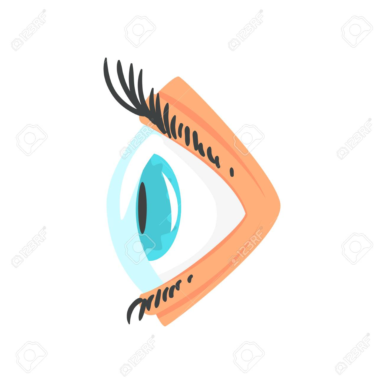 human eye with contact lense side view cartoon vector illustration rh 123rf com Bird Clip Art Side View From the Eyes