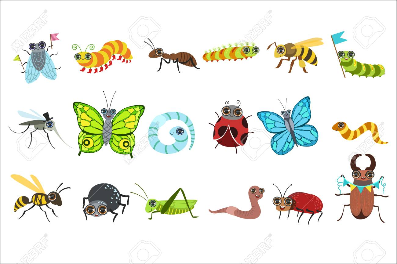 Insect Cartoon Images Set - 102767401