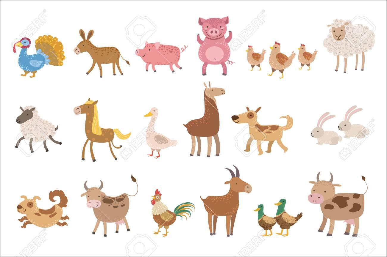Farm Animals Set - 102851066