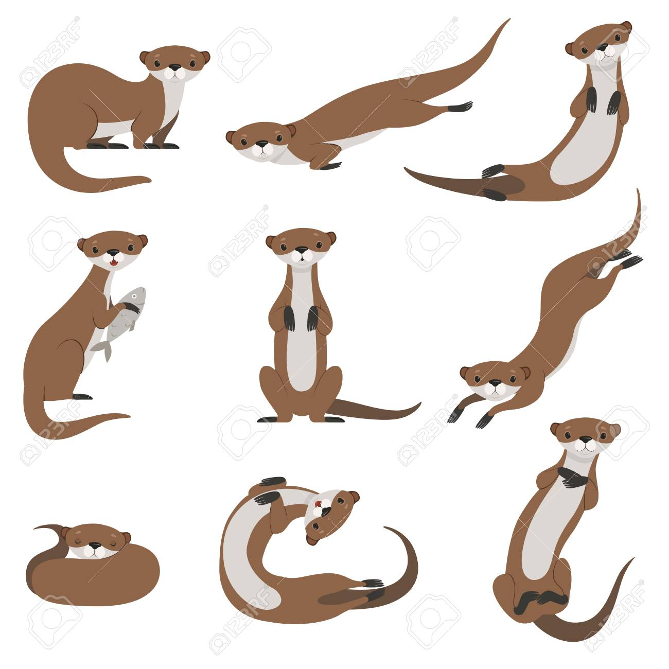 Cute otter set, funny animal character in various poses vector Illustration isolated on a white background. - 111655216