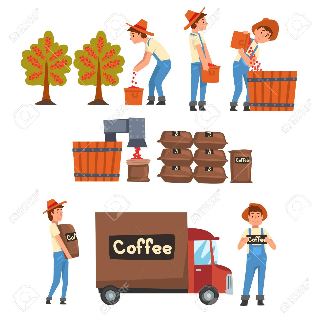 Coffee Industry Production Stages Set, Farmers Gathering, Sorting, Packaging and Transporting Coffee Beans Vector Illustration on White Background. - 122422326