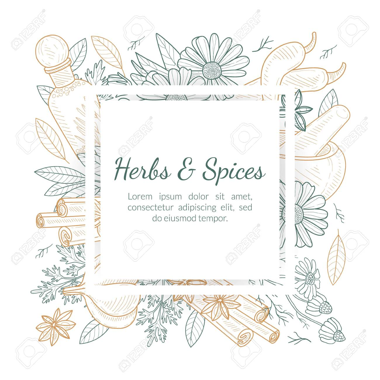 Herbs and Spices Banner Template with Natural Products Seamless Pattern and Space for Text Hand Drawn Vector Illustration - 146976743