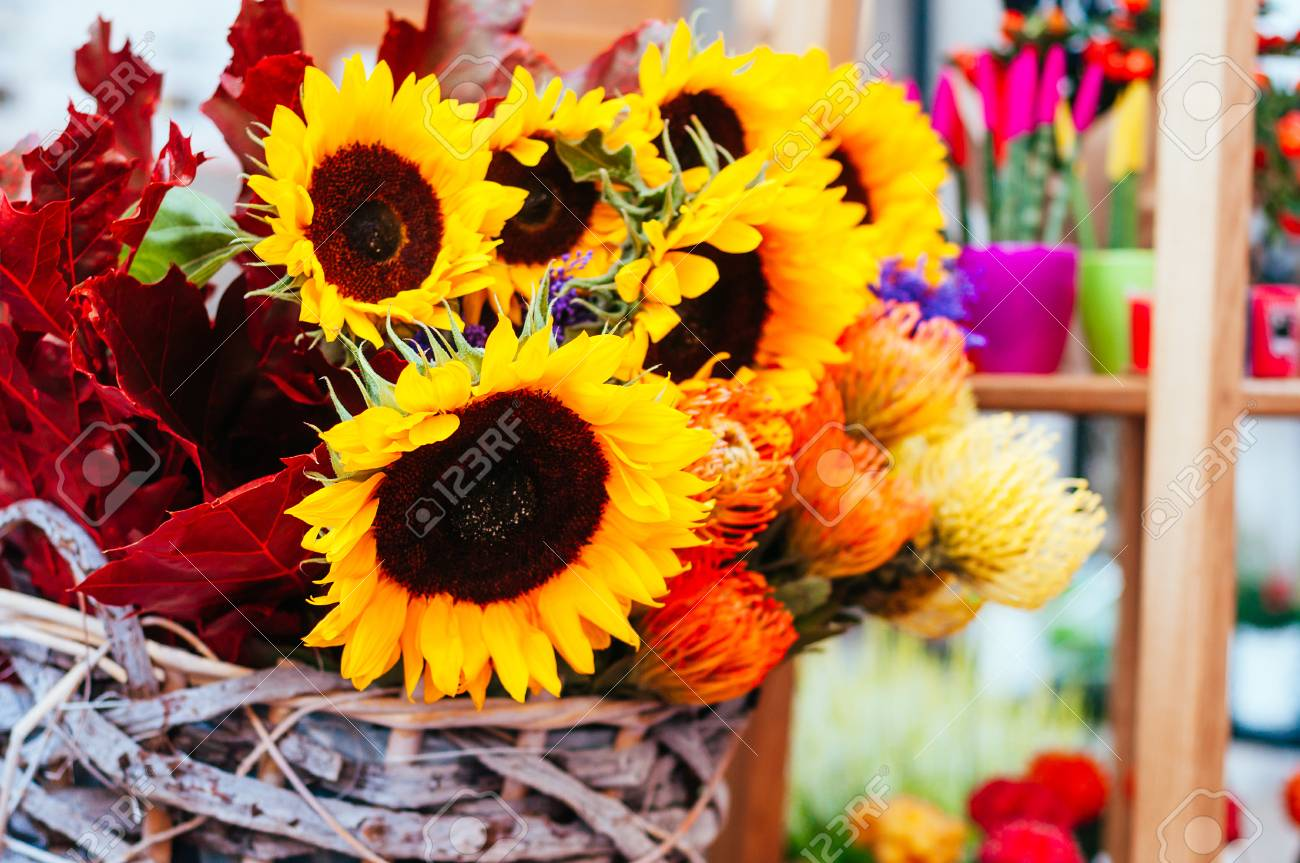 Beautiful Sunflower, Protea Flower Bouquet Close Up. Spotted.. Stock ...