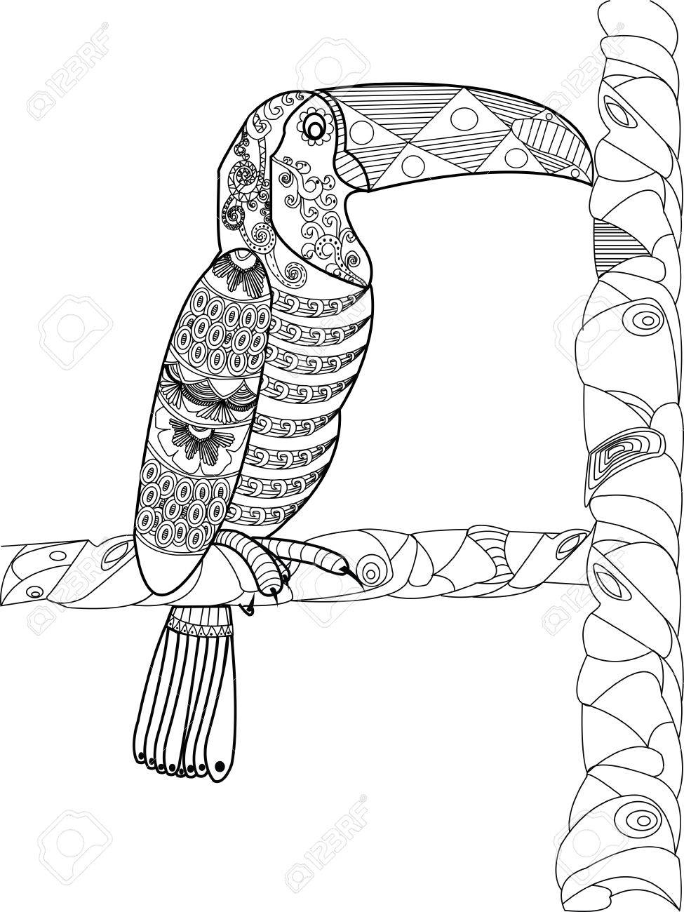 Toucan Animal Coloring Book For Adults Vector Illustration Anti Stress Adult