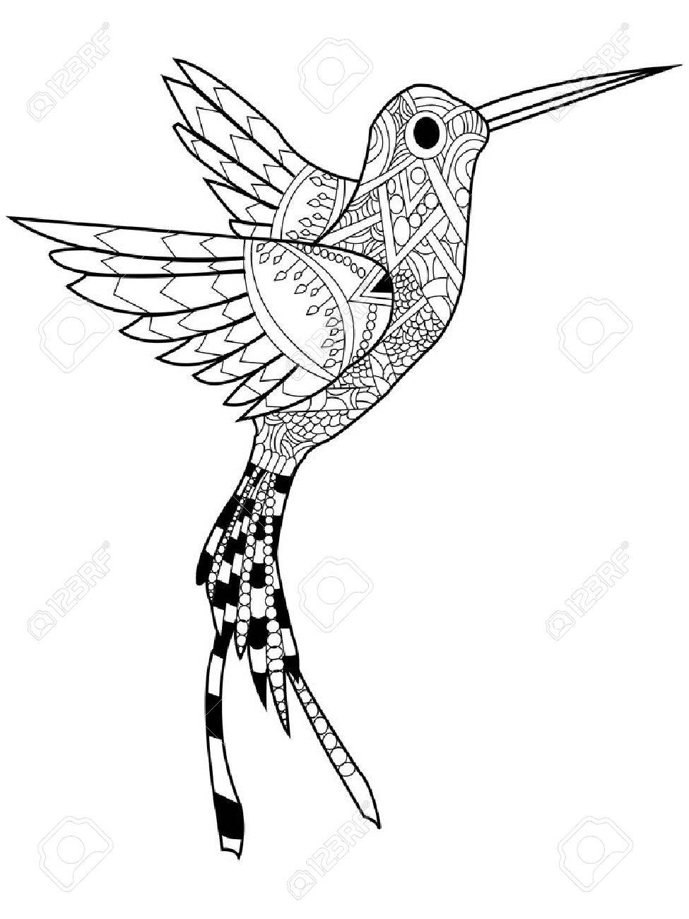 Hummingbird coloring book for adults vector illustration. Anti-stress..