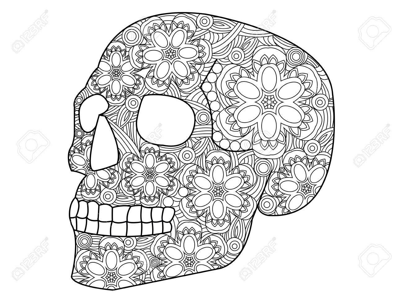 Libro Para Colorear Ilustración Del Cráneo Por Los Adultos Del ...