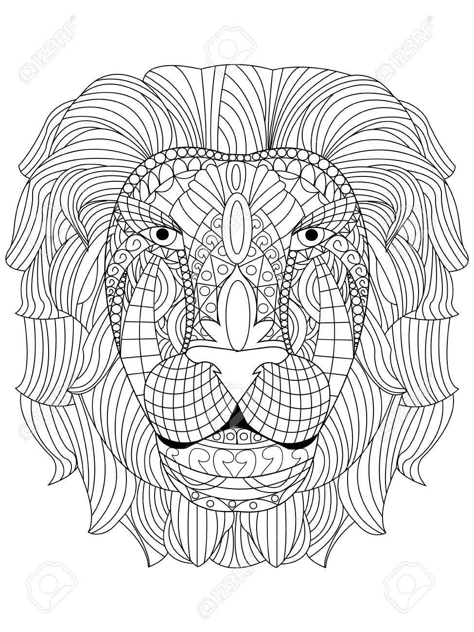 Tête De Lion Livre De Coloriage Pour Les Adultes Illustration