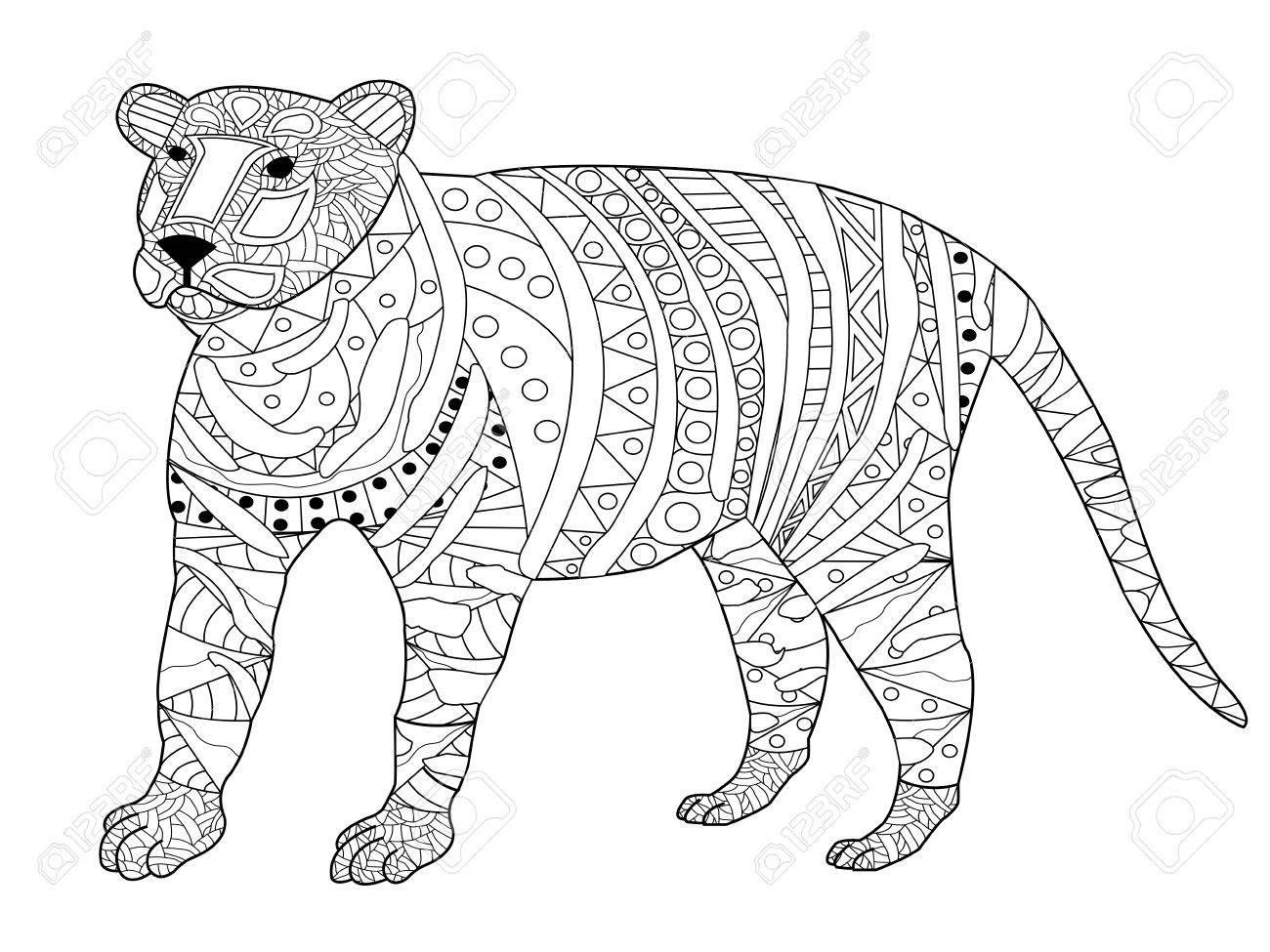 libro para colorear tigre para la ilustración vectorial adultos