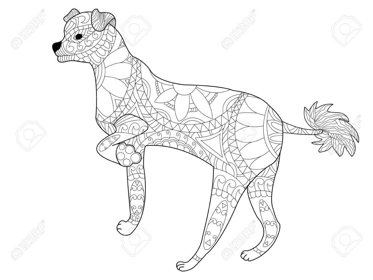 Chino Libro Para Colorear Perro Con Cresta Para Adultos Ilustración ...