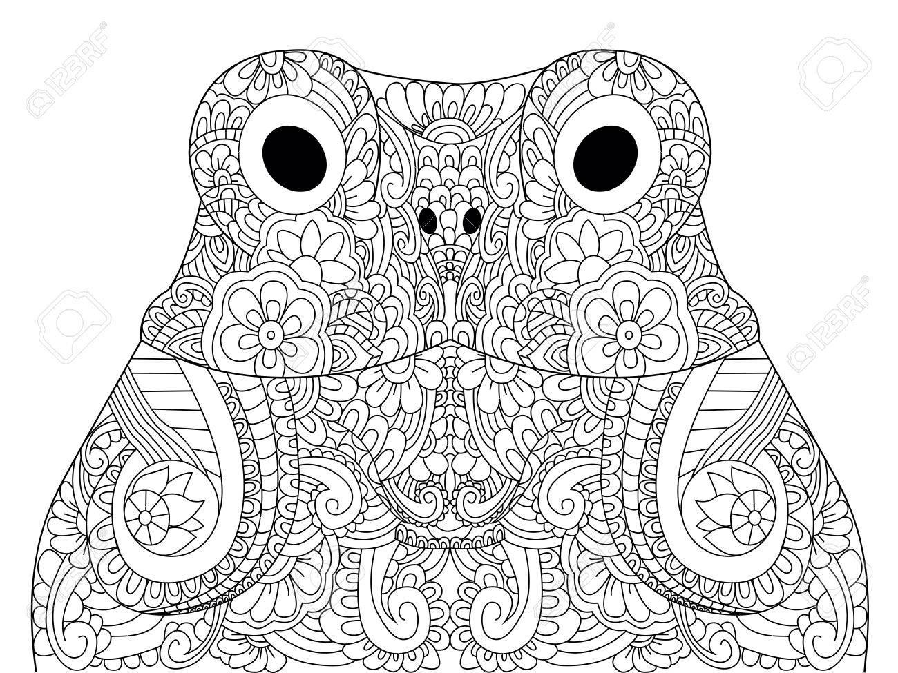 Cabeza De La Ilustración Del Vector Del Libro Para Colorear Froggy Antiestrés Para Colorear Sapo Adulto Líneas Blancas Y Negro Hoptoad Anuran