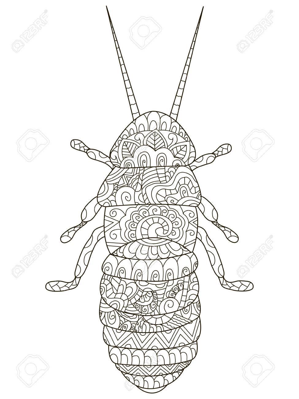 Escarabajo Colorear Ilustración Mascota Adulta. Antiestrés Colorear ...