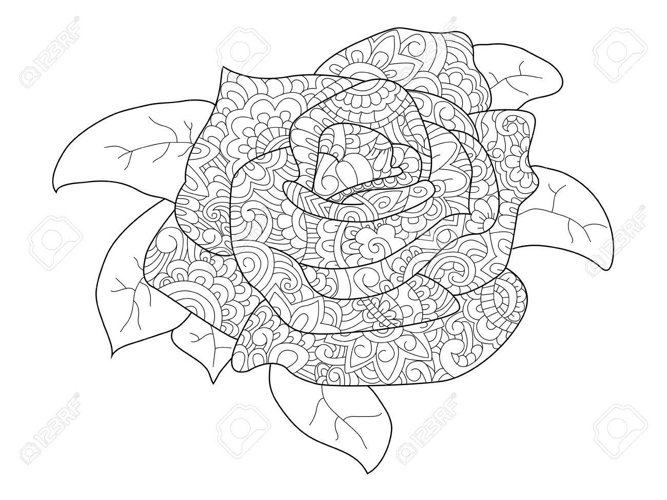 Rose coloring book for adults illustration. Flower anti-stress..