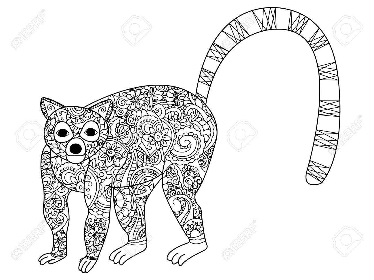 Anillo De Cola Lémur Libro Para Adultos Ilustración. Antiestrés Para ...
