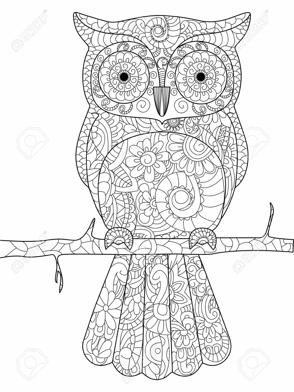 Owl On A Branch Coloring Book For Adults Illustration. Anti-stress ...