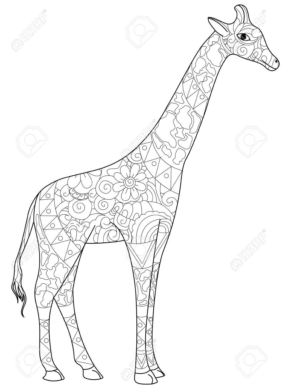 Giraffe Coloring Book For Adults Vector Illustration Royalty Free ...